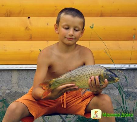 Рыбные котлеты – от ненависти до любви….