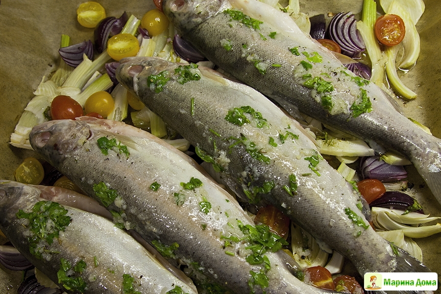 фенхель рецепты приготовления с рыбой